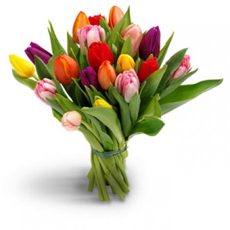 Renkli Lalelerden Çiçek Buketi