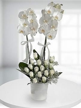 Orkide ve Beyaz Gül Aranjmanı
