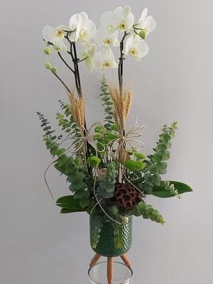 Ayaklı Vazoda 2 Dal Beyaz Orkide